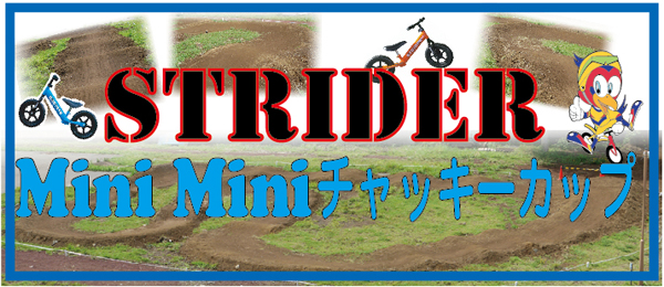 Strider_minimini_banner2